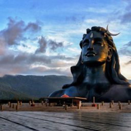 Adiyogi's night out!